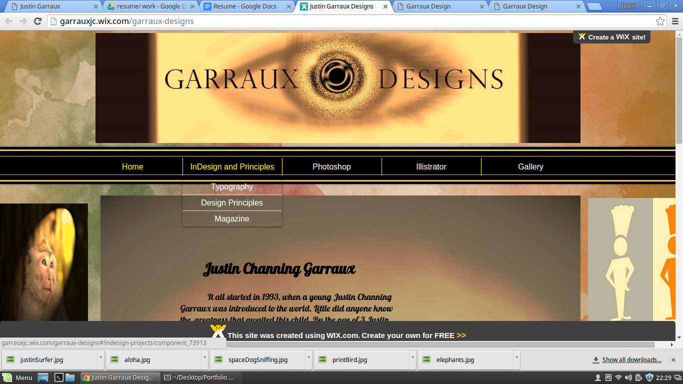 image of garraux Designs, a website made by Justin Garraux to showcase his performance in adobe illustrator, InDesign, and Photoshop. College of Charleston, South Carolina. justingarraux.com, justingarraux, justin garraux